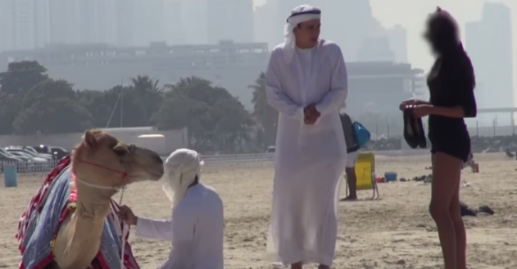 Prank Video Exposes A Gold Digger By Luring Her In With A Camel camel tn
