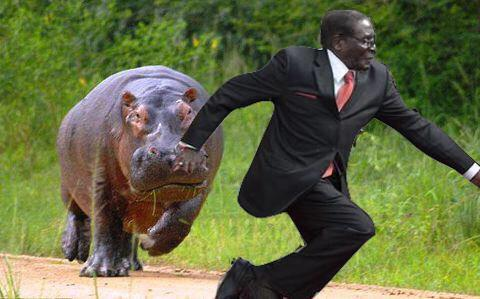 robert mugabe memes 10 Robert Mugabe Fell Over Today And The Internet Reacted