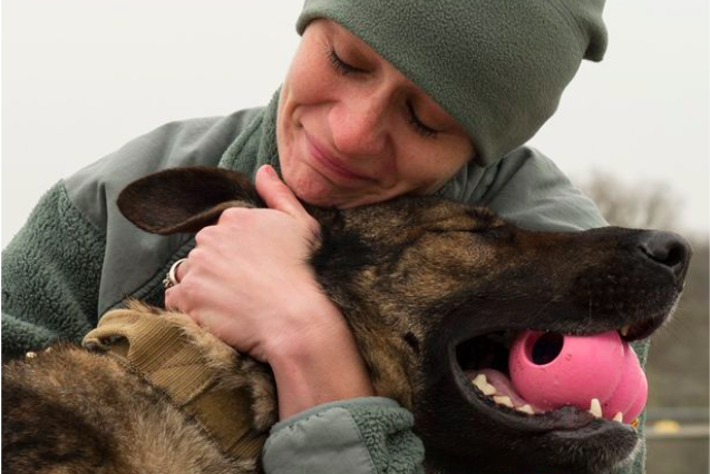 army 2 637x426 Army Dog Gets Tragic Send Off After Being Diagnosed With Terminal Cancer