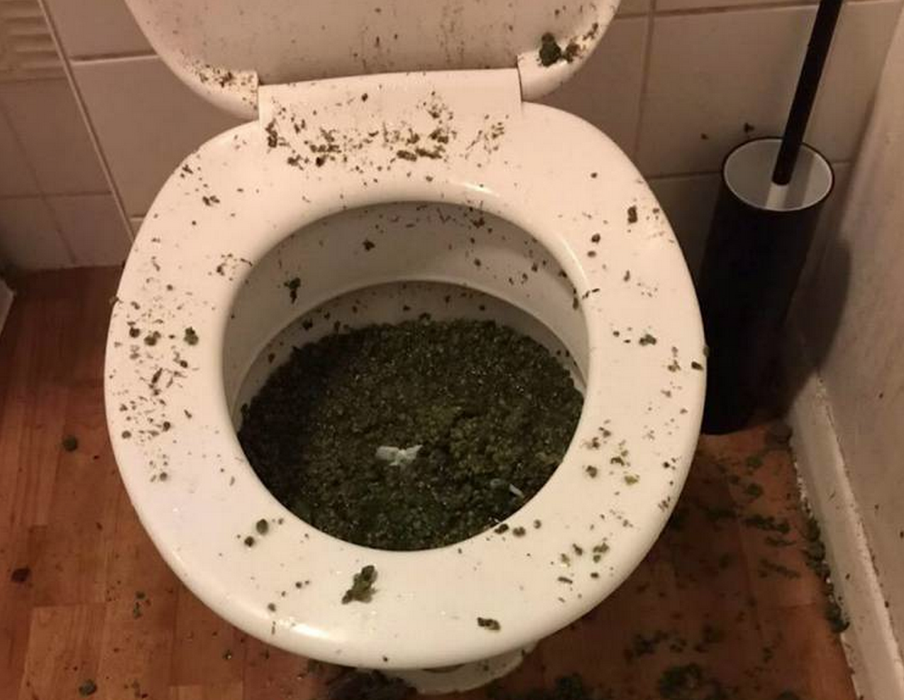 Screen Shot 2015 04 29 at 21.58.11 Police Find Toilet Full Of Weed After Smelling It Through The Letterbox