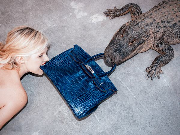 birkin alligator tyler shields3 This Photograph Is Turning Americas Racist History On Its Head