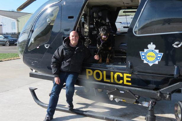 Dog Diagnosed With Cancer Gets Bucket List Including Police Car Ride bucket