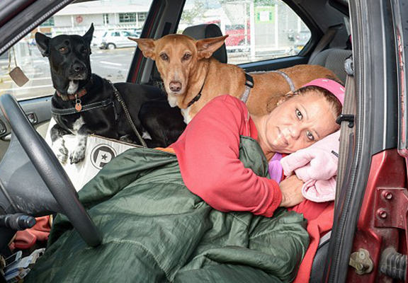 Woman Refuses To Give Up Dogs For Council House, Has To Live In Car council house web1