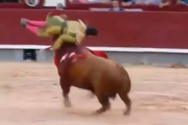 madrid Matador Gets Upended By Bull, The Footage Is Seriously Shocking To Watch