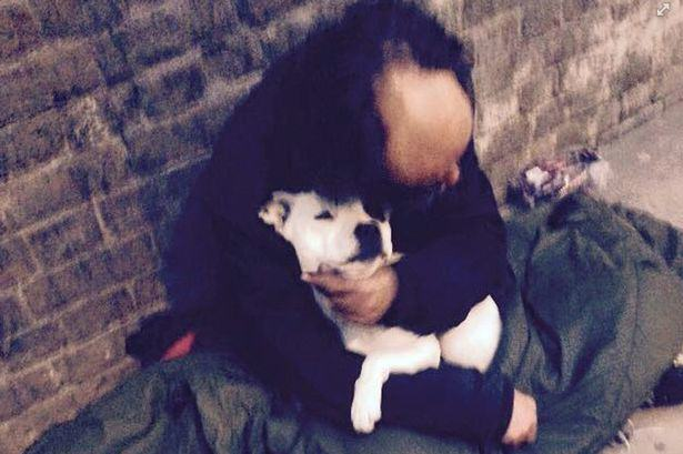 treacle dog Homeless Man Reunited With His Dog After Fake Policeman Stole It
