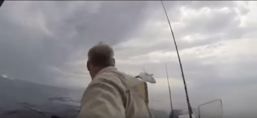UNILAD NmNPfl5 Moment Shark Jumps 12 Feet Out Of Water, Terrifying Fisherman