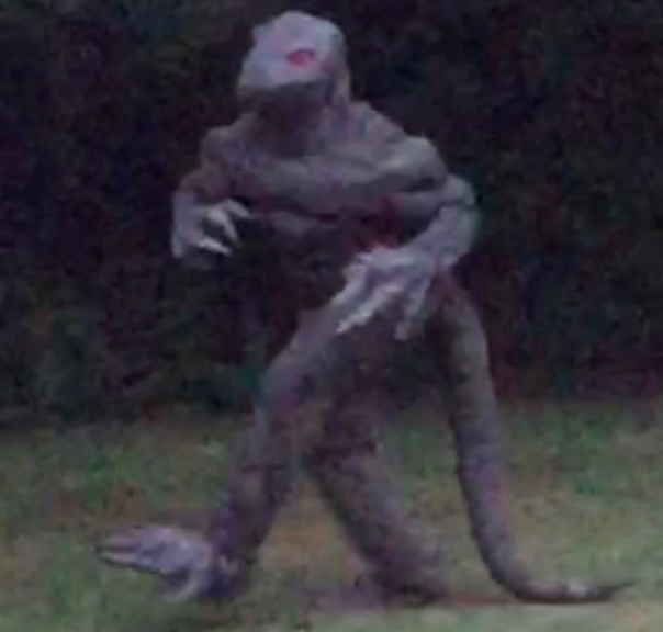 Churchgoer Insists This Lizard Man Is Real After He Ran Past Her UNILAD lizard man 13