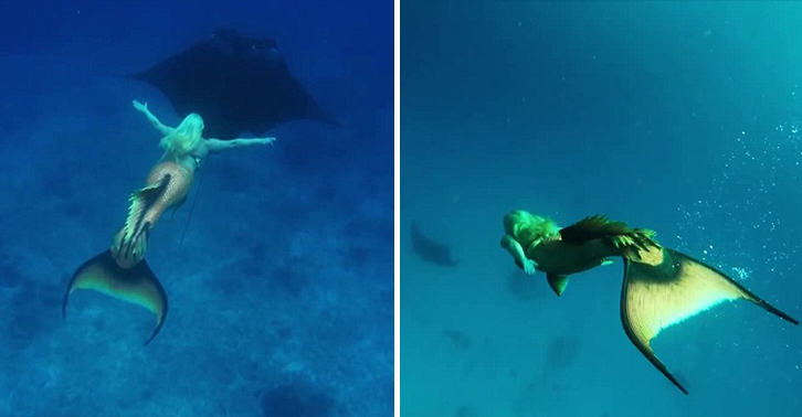hFQr716gamermaid melissa FB.jpg Real Life Mermaid Swims With Sea Life, Can Hold Breath For 5 Minutes