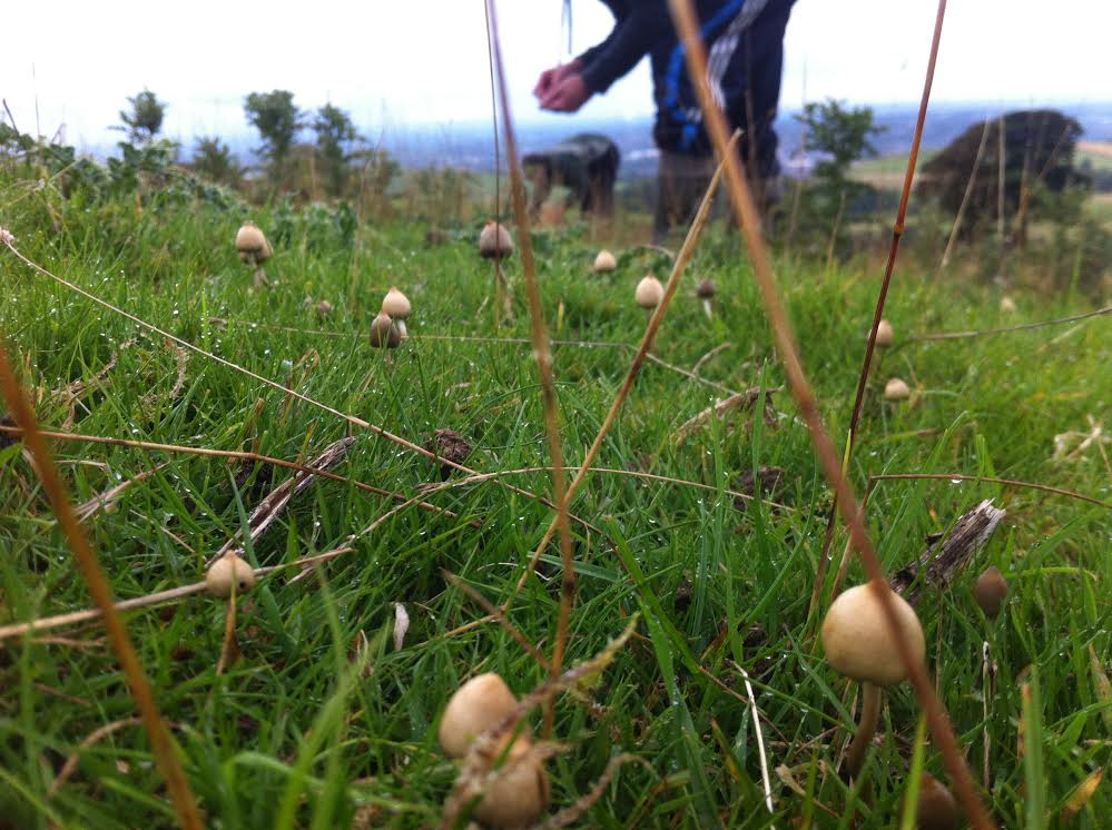 Mother Photo1 We Spoke To A Guy Who Treats His Severe Anxiety With Magic Mushrooms