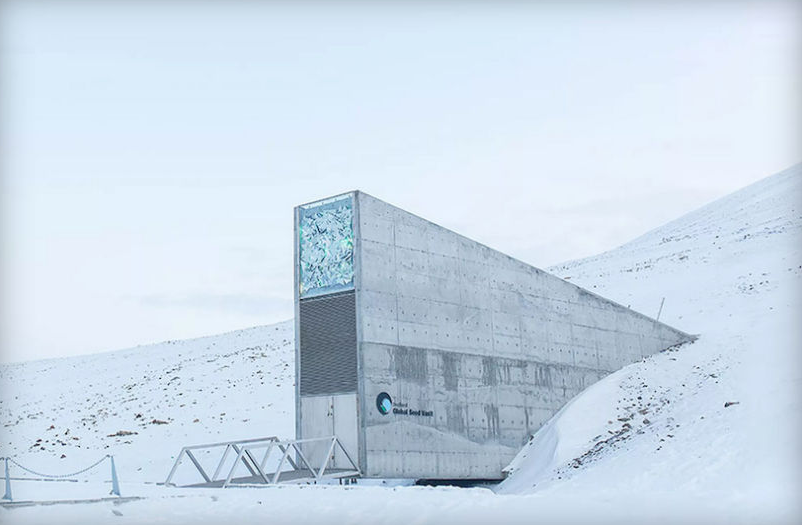 Screen Shot 2015 09 23 at 22.30.19 Crisis In Syria Forces The Worlds Doomsday Vault To Access Its Stores