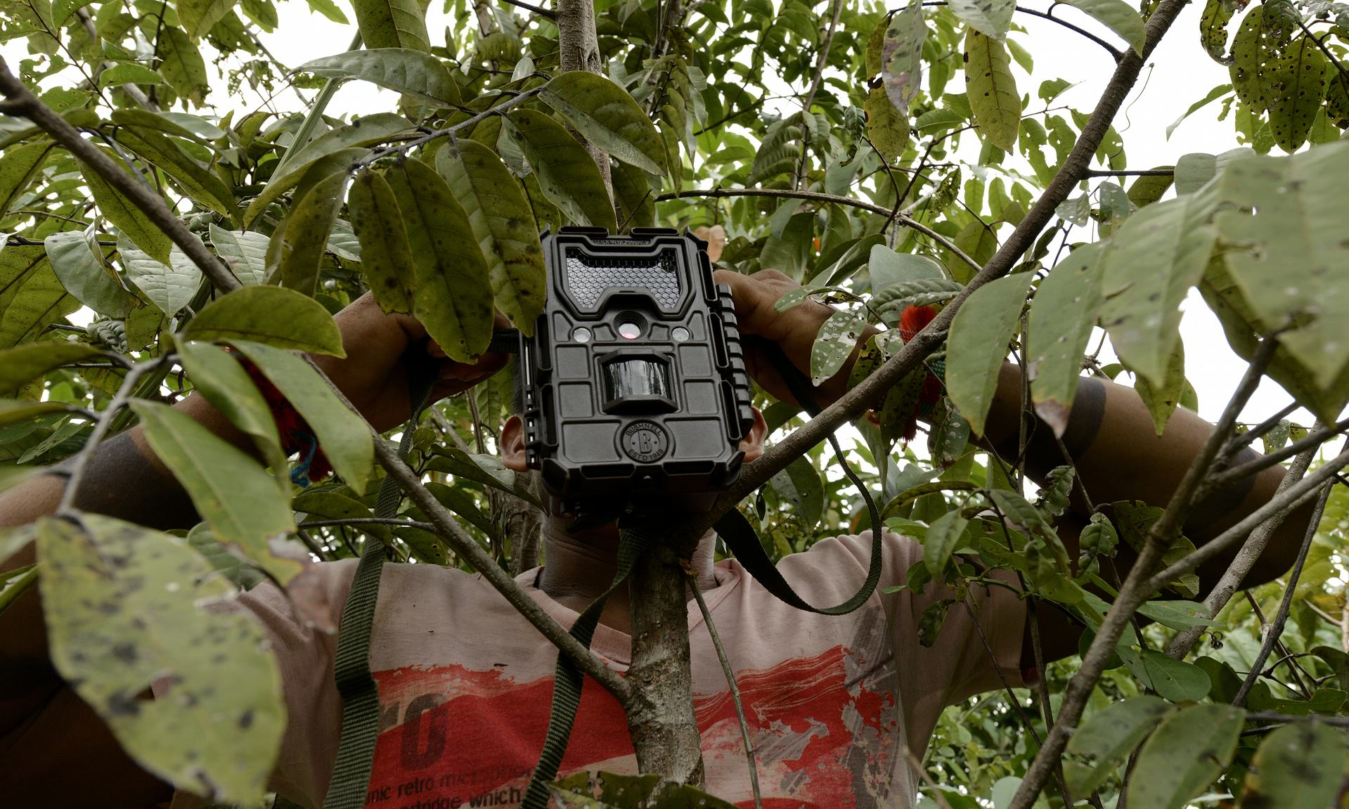 UNILAD A Ka'apor Indian sets up a trap camera in an area used by illegal loggers. Photograph Lunae ParrachoGreenpeace2 This Amazon Tribe Use Unusual Methods To Protect Their Land From Illegal Loggers