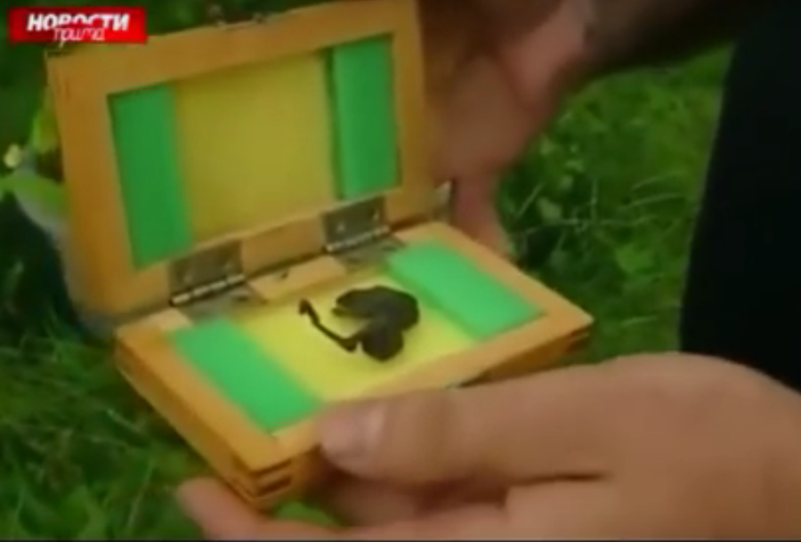 Russian Scientists Cant Identify This Alien Corpse Found By River UNILAD Screen Shot 2015 09 02 at 14.19.157