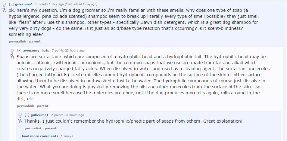 Heres The Science Behind Why Dogs Smell So Bad When Wet UNILAD dog smell post 42