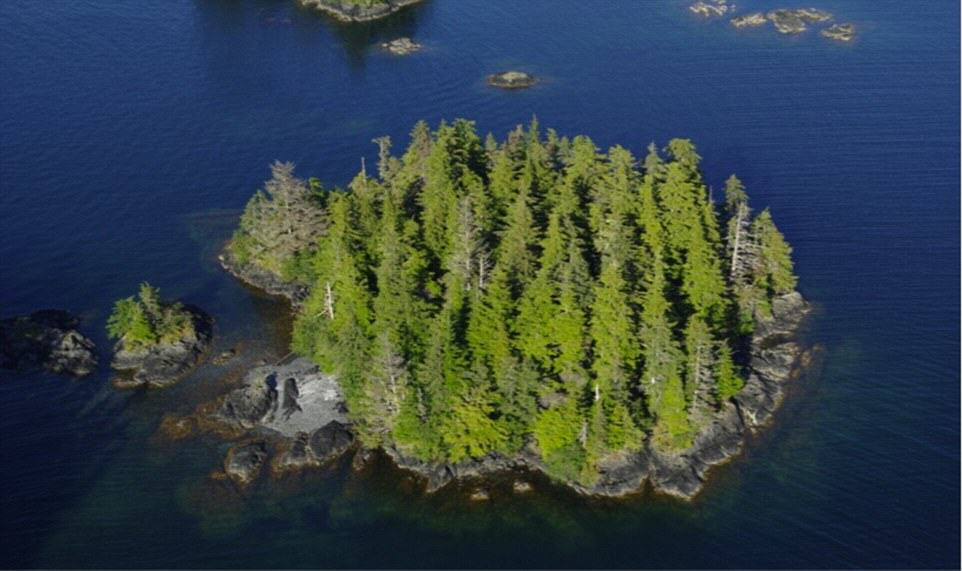 UNILAD Aleutkina Island 23 You Can Literally Buy These Private Islands For Less Than £250K