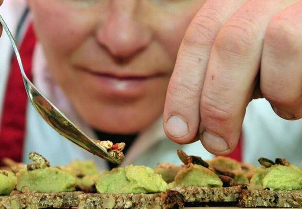 Grasshoppers And Worms Are On The Menu At New UK Restaurant UNILAD Grub Kitchen 152847 615x426