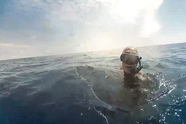 Spearfisher Forced To Shoot Shark Off Coast Of Queensland UNILAD spearfish33