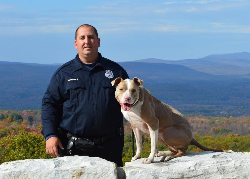 UNILAD 232320 History Made As Rescue Dog Becomes First Ever NYPD K9 Pit Bull