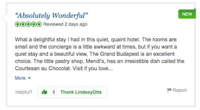 budapest6 A Fictional Hotel Is Being Reviewed On TripAdvisor