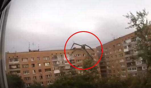 photoshop monster alien spider captured on camera Five Eerily Convincing Videos Of Supposed Paranormal Activity