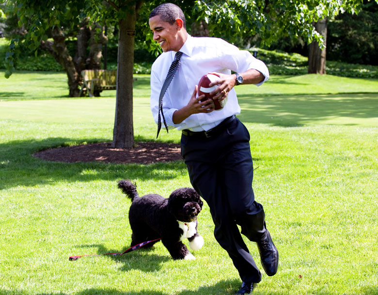 This Guy Probably Regrets Trying To Kidnap President Obamas Dog bo