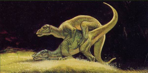 dinosex2 Scientists Have Made Some Interesting Discoveries About Dinosaur Sex