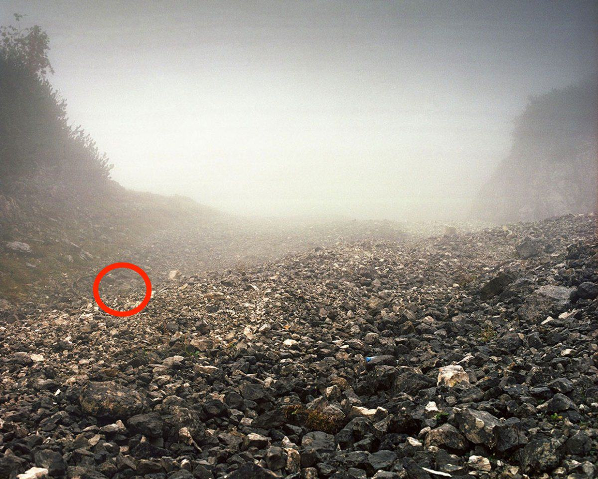 Can You See The Camouflaged German Sniper In These Photographs? sniper8