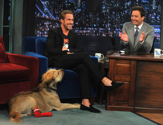 Ryan Gosling Pictures His Dog Jimmy Fallon Turns Out Ryan Gosling Is A Real Life Superhero