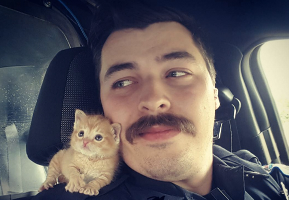 Cop Rescues Abandoned Kitten And Now They're A Crime Fighting Duo