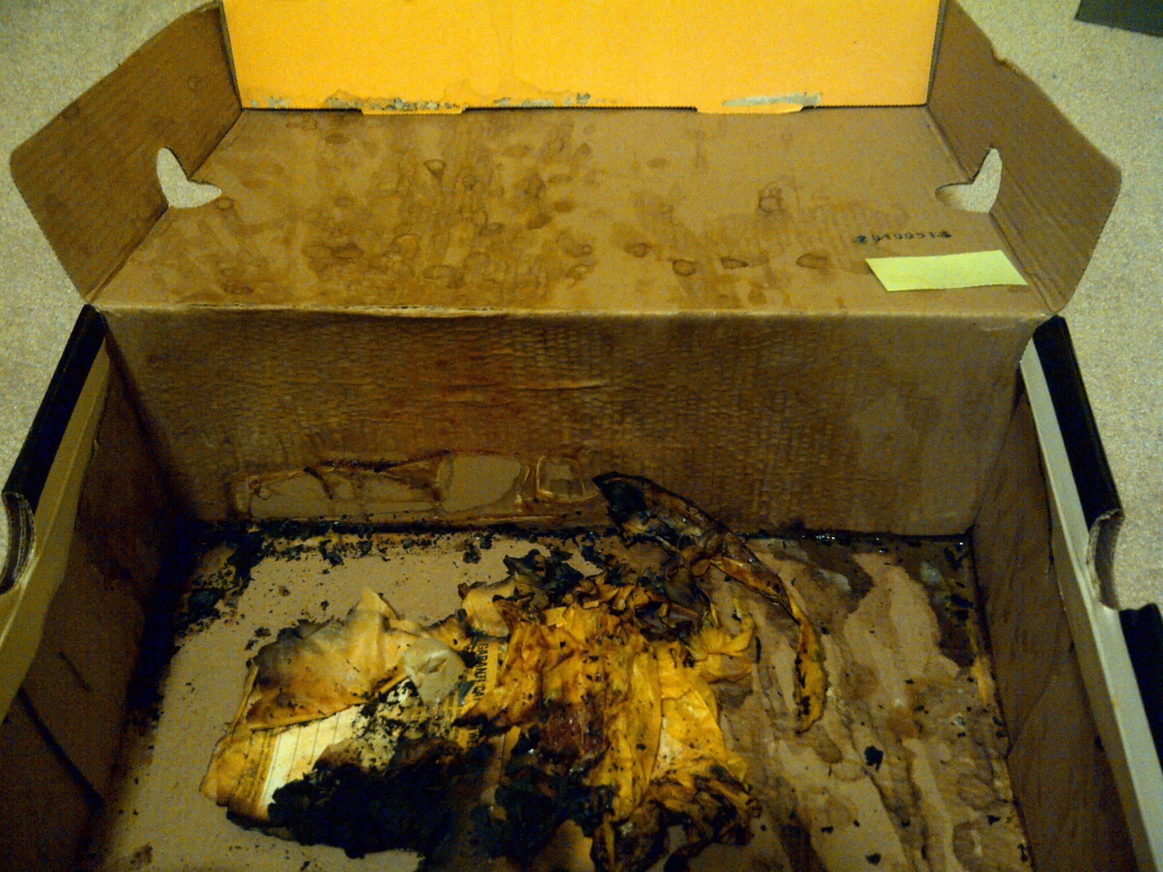 cumbox NOPE: This Box Is The Most Hideously Disgusting Thing Ever
