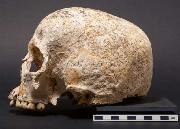 90559105 skulltwo Face Of Mystery Teen Girl Who Died 3,700 Years Ago Finally Revealed
