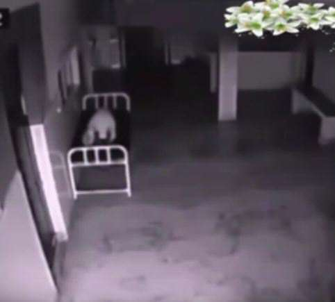 vid 1 5 Eerie Hospital Footage May Prove We All Have Souls