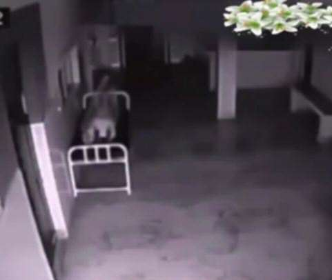 vid 2 6 Eerie Hospital Footage May Prove We All Have Souls
