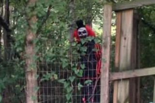 Creepy Clown Sightings Escalate, Locals Scared To Leave Their Houses