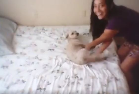 Teen Films Herself Smiling While Abusing Puppy In Sick Video pic thumb