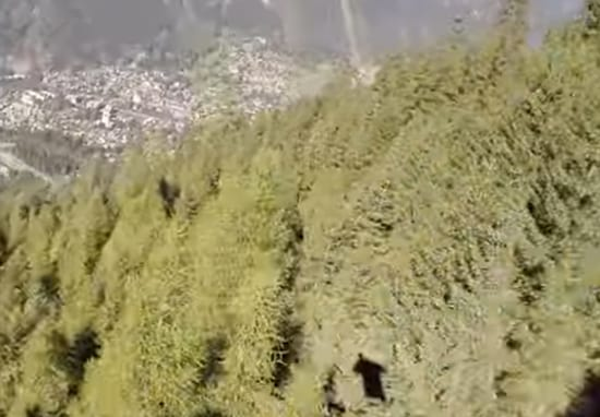 Wingsuit Flyer Captures Moment He Avoided Death In High Speed Crash