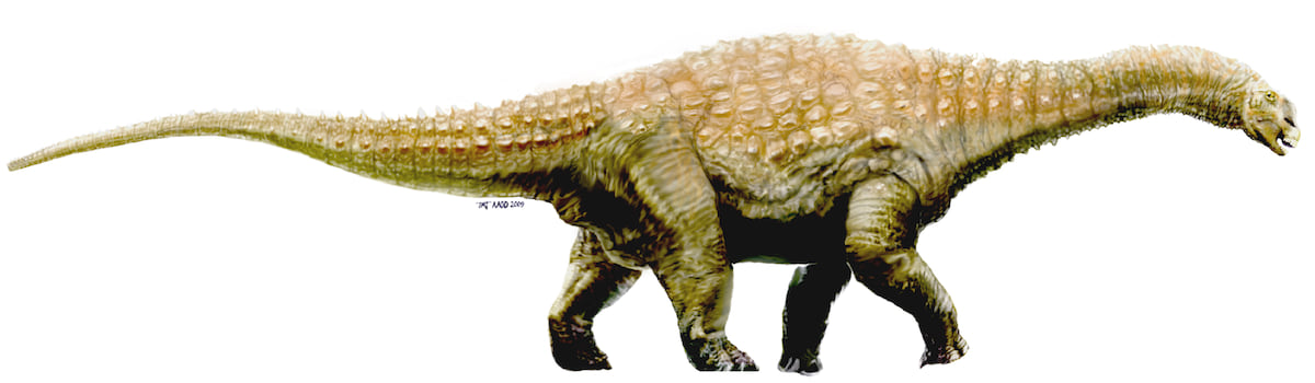 6391UNILAD imageoptim Diamantinasaurus A New Dinosaur Species Has Been Discovered In Australia