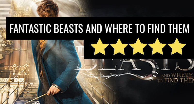 37564UNILAD imageoptim fant review Fantastic Beasts Is A Delightful Introduction To The U.S. Wizarding World