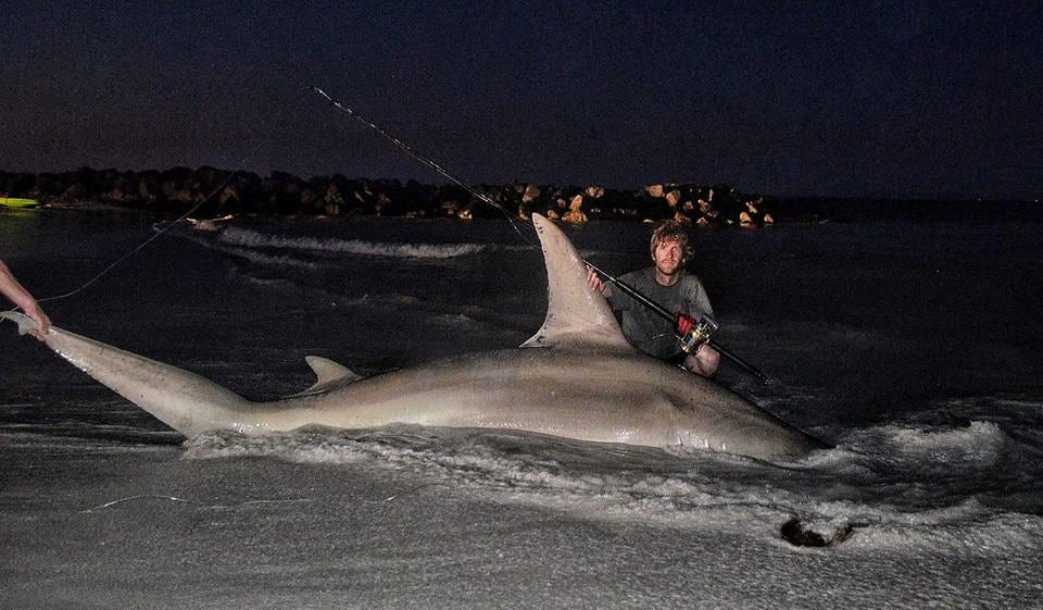 7391UNILAD imageoptim 14925809 10154819072535039 7310308031781675524 n Aussie Fishermen Reel In The Largest Shark Ever Caught