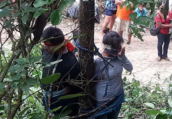 Woman Dies After Being Tied To Tree In Brutal Punishment 52280UNILAD imageoptim fireants web