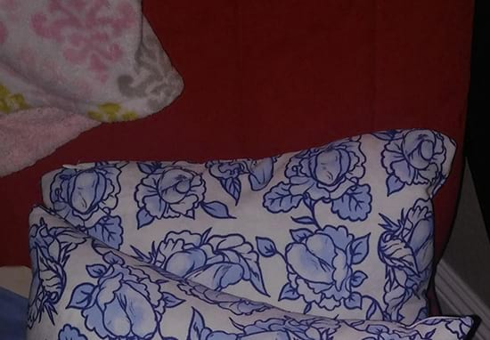 Mum Fails To Spot Something Strange On Cushion She Bought For Daughter