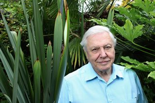 David Attenborough Vows Not To Let Memory Loss Stop His Work